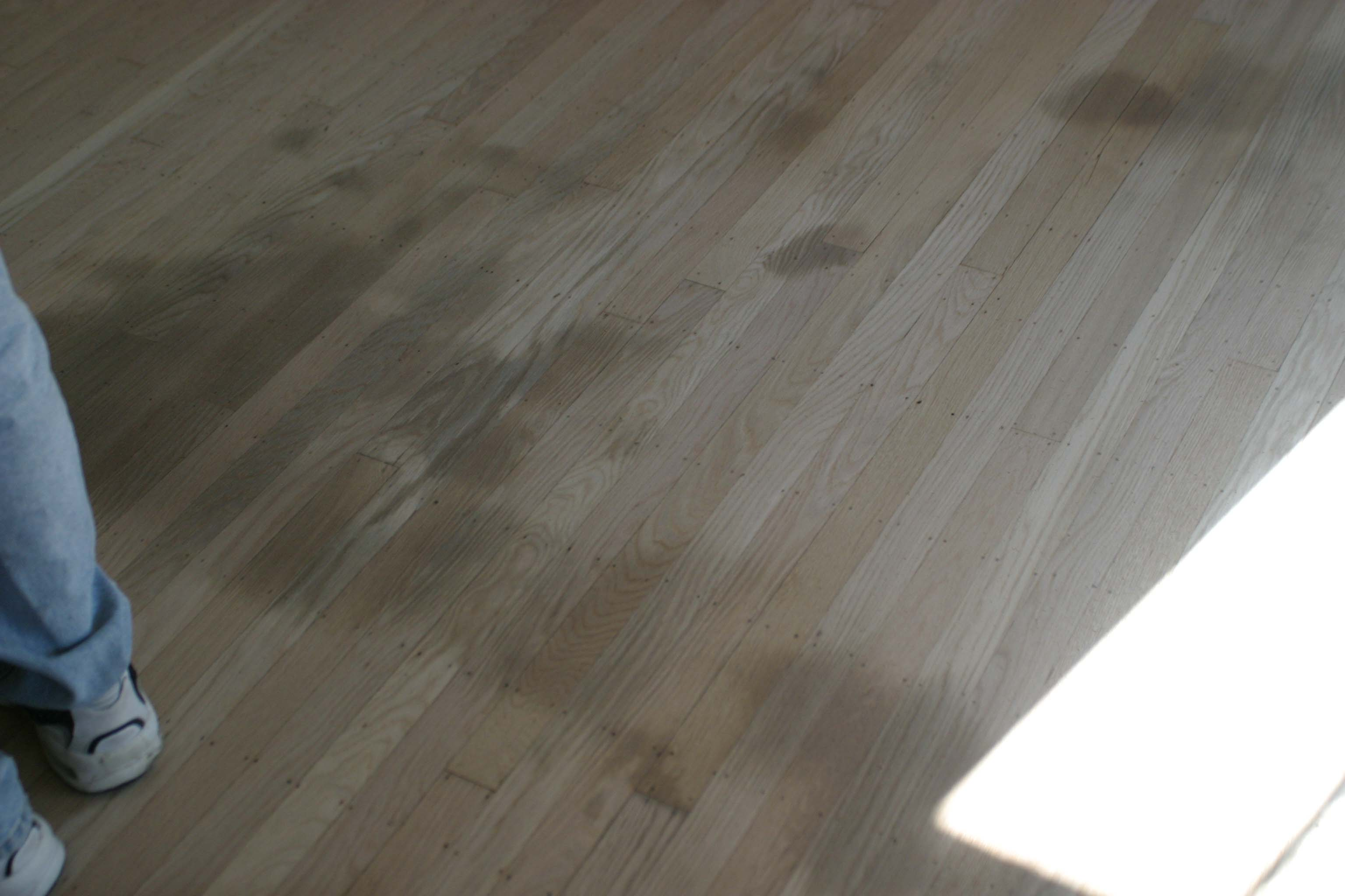 Floor Refinishing - 1 - Stains